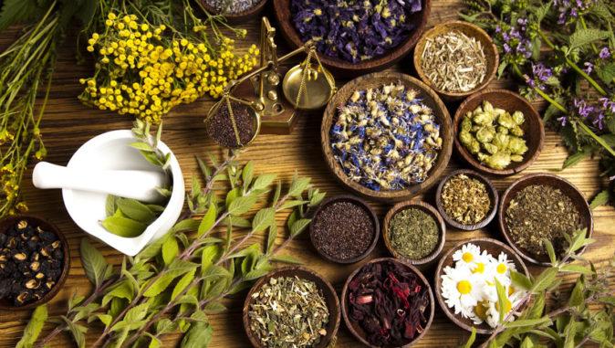 Bitkisel Tedavi Yöntemleri